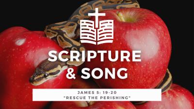 James 5: 19-20